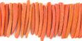 Coco tucks orange wholesale beads