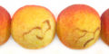 Apple coral rough limestone round 20mm wholesale beads