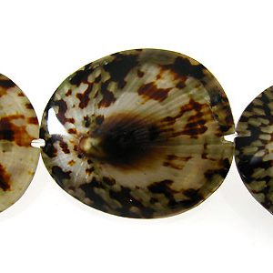 Limpet shell black wholesale beads