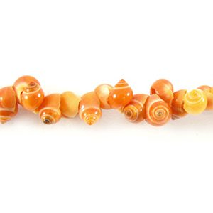 Red mongo shell wholesale beads