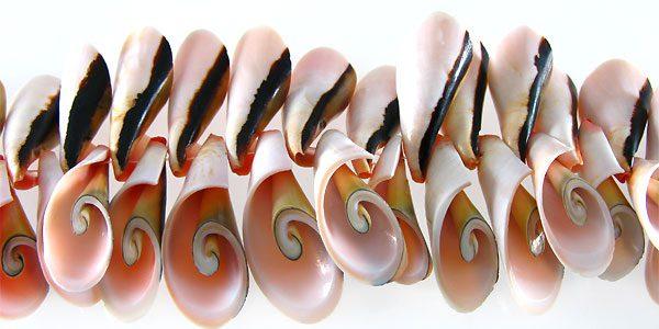 Botswana Side Cut wholesale beads