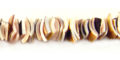 Luanos shell crazycut everlast wholesale beads