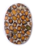 ipil-ipil seed inlay oval 30x45x4mm thic