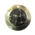 Blacklip 50mm round embossed wholesale pendants