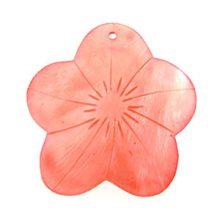 Hammershell small flower pink