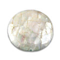 White abalone doubles sided disc wholesale