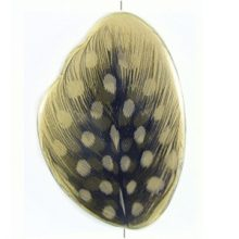 White wood resin w/ guinea fowl feather