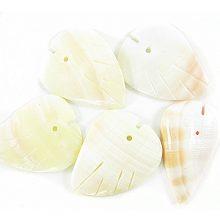 Red lip shell leaf shape wholesale
