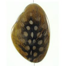 Robles wood resin w/ guinea fowl feather