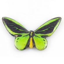 paper print wood pendant goliath butterfly