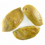 wholesale Patani seeds colored yellow